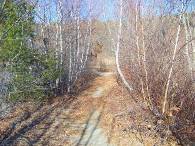 Sandy lower trail