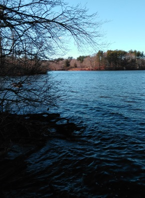 Viewpoint of wampatuck pond at Hanson Veterans Memorial Town Forest.