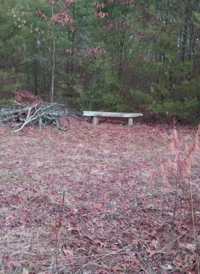 Trail side bench at Hanson Veterans Memorial Town Forest.