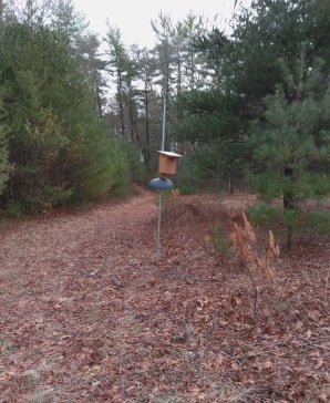Birdhouse in the meadow area at Hanson Town Forest.