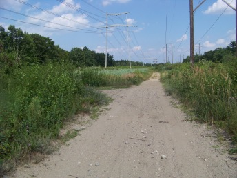 wiggins trail on power lines in holbrook
