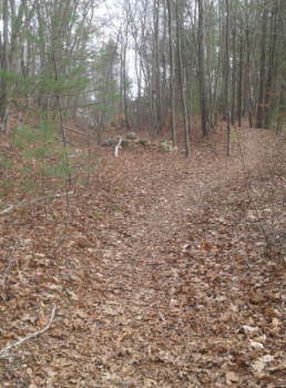 indian head trail in hanover