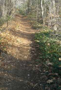 narrow portion of indian head trail