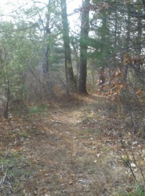 luddams ford trail