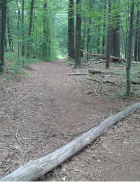 wide indian head trail in hanover