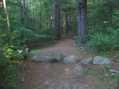 Wes Osborne Trail in jacobs pond conservation area