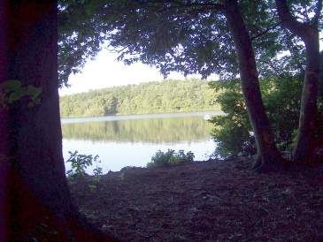 pond view from forest at jacobs pond conservation