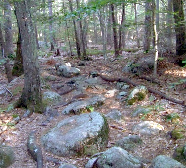glacial til at jacobs pond in norwell