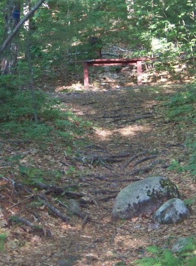 bench along hiking trail at jacobs pond conservation area