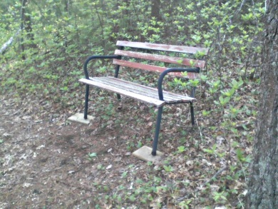 bench on the john sherman path in the camp wing conservation area