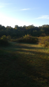 meadow at lower end of Centennial Park in Norwell