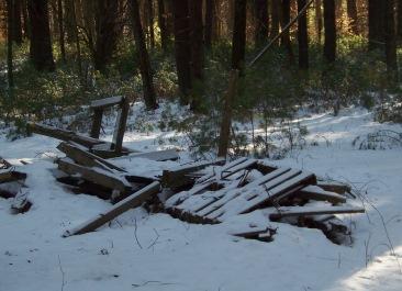 wood dumped on conservation land