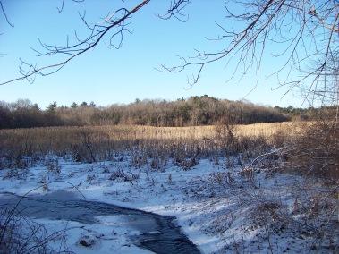 view of mckenna marsh