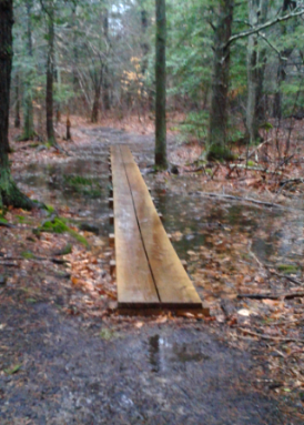 planks of wet area at melzar hatch reservation