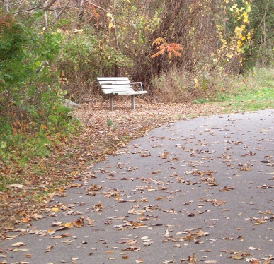 resting bench at pond meadow park