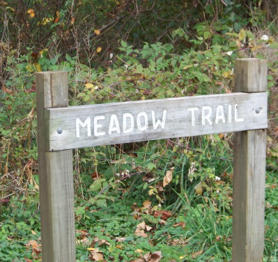 meadow trail at pond meadow park