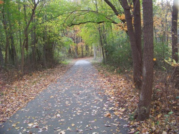 paved trail at pond meadow park