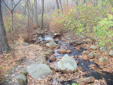 stream behind dam at pond meadow park