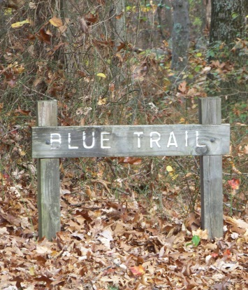 blue trail at pond meadow park