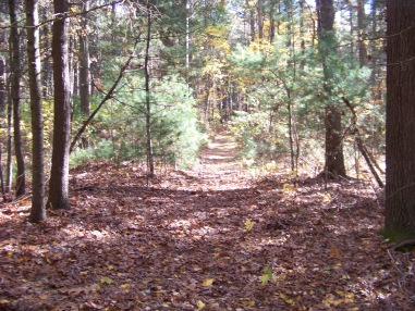 trail in pudding hill reservation