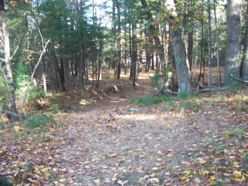 connector trail at pudding hill in marshfield