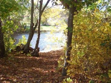 fishing spot on chandler pond in marshfield