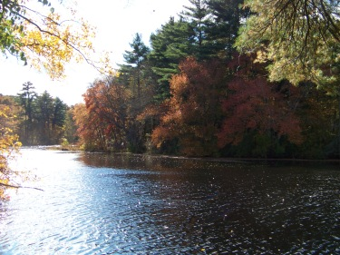 chandler pond at pudding hill
