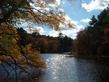 chandler mill pond at pudding hill