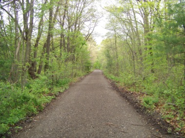 rockland rail trail in spring