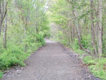rockland rail trail