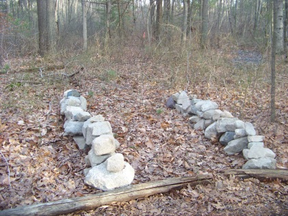 start of a new trail in Rockland Town Forest