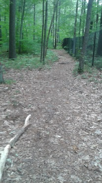 cart path along a fence at rocky run conservation