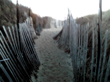 sandy passageway thru protected dunes at rexhame beach