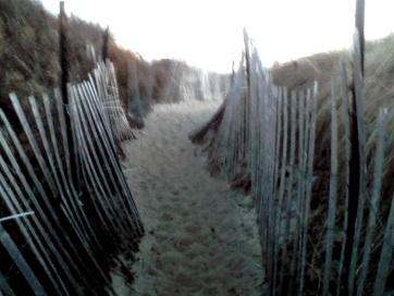 sandy passageway thru protected dunes at rexhame beach