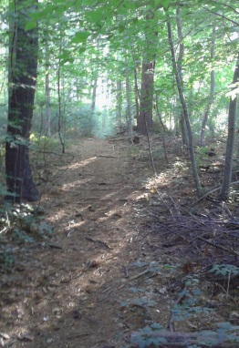 Side trail at Silver Lake Sanctuary leads to a small pond.