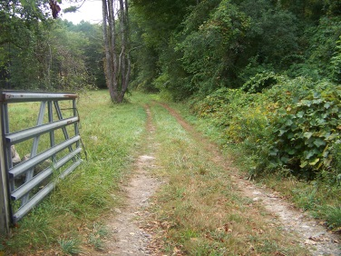 river trail at stetson meadows in norwell