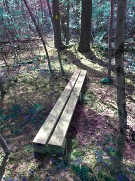 Foot bridge on second portion of loop