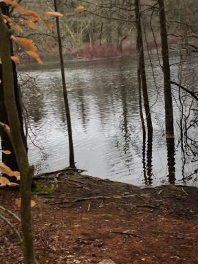 view of winnetuxet early spring