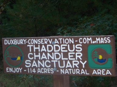 Thaddeus Chandler Sanctuary
