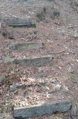 railroad tie steps the Bay Circuit Trail uses to exit Thaddeus Chandler Sanctuary