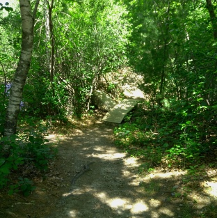 The hiking trail leads over a small bridge at Thompson Pond.