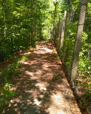 Hiking trail along a chain link fence.