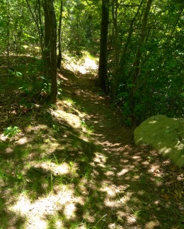 Narrow path leading along Thompson Pond.