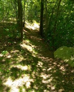 Narrow path leading along Thompson Pond.