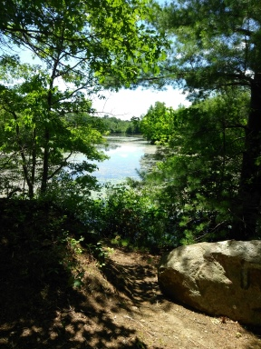 Thompson Pond in Abington