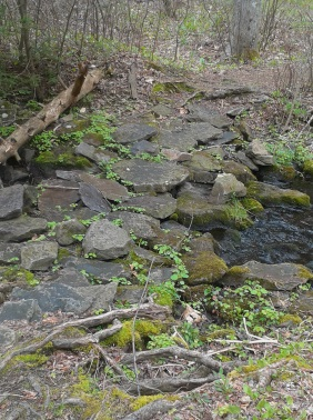 stepping stone bridge over Rocky Run Stream