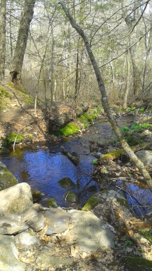 view of stream and continuing hiking trail