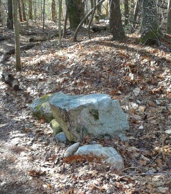 resting rock along a log lined hiking trail
