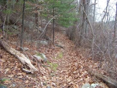 trail at triphammer pond in early winter