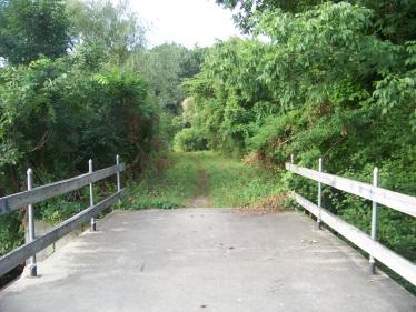 bridge over triphammer pond